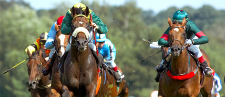 Head-on view of four jockeys on horses in a race